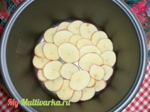 Картофель нарезать на кружочки
